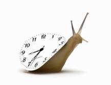 reloj-lento-de-caracol-1