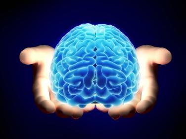 Cerebro trasplante