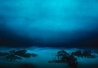 fondos-oceanos-400x276