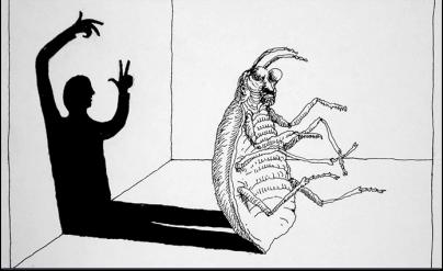 cucaracha-hombre