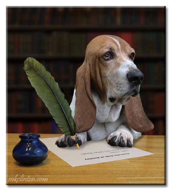Perro escribiendo